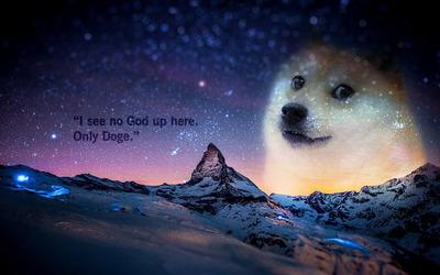 doge-27299-400x250